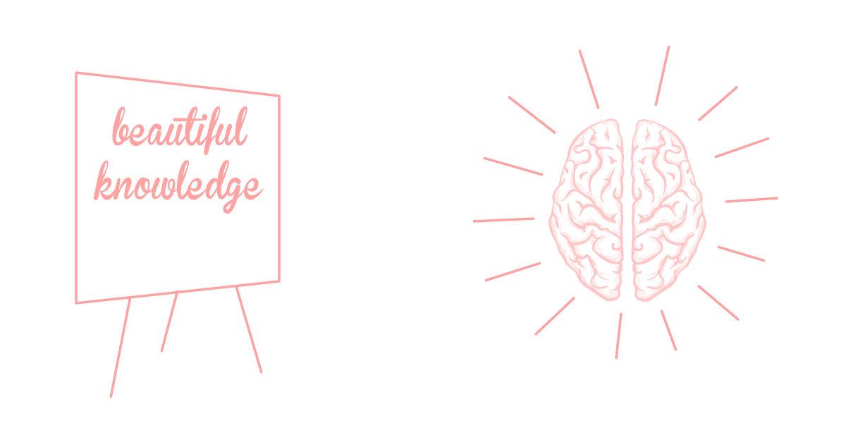 Zu viel Wissen in die Gehirne quetschen
